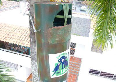 Proyecto Guacamayas. Nidos